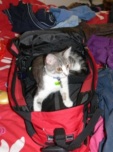 Packing is such sweet sorrow